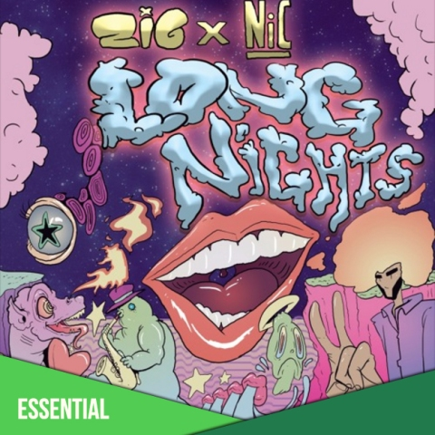 zig nic long nights single cover